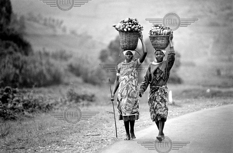 ©Martin Adler/Panos Pictures.RWANDA..Hutu women carrying potatoes.