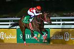 RIYADH,SAUDI ARABIA-FEB 29: Full Flat,ridden by Yutaka Take,wins the Saudi Derby at King Abdulaziz Racetrack on February 29,2020 in Riyadh,Saudi Arabia. Kaz Ishida/Eclipse Sportswire/CSM