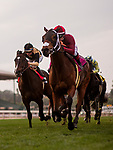 ARCADIA, CA - JANUARY 06: Itsinthepost #8 with Tyler Baze wins the San Gabriel Stakes at Santa Anita Park on January 06, 2018 in Arcadia, California. (Photo by Alex Evers/Eclipse Sportswire/Getty Images)