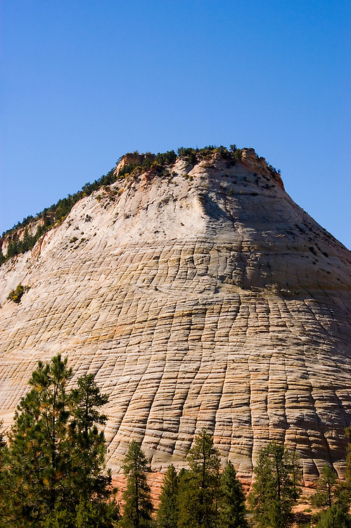 Zion National Park, Utah, UT, Checkerboard Mesa rock formation, landform, Southwest America, American Southwest, US, United States, Image ut375-17645, Photo copyright: Lee Foster, www.fostertravel.com, lee@fostertravel.com, 510-549-2202