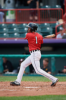 Erie SeaWolves Sergio Alcantara (1) at bat during an Eastern League game against the Altoona Curve on June 5, 2019 at UPMC Park in Erie, Pennsylvania.  Altoona defeated Erie 6-2.  (Mike Janes/Four Seam Images)
