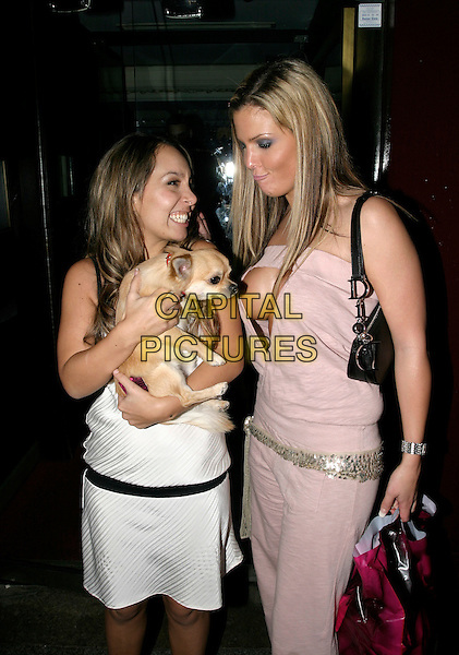 DONATELLA & MICHELLE BASS - BIG BROTHER.Celebrity Ann Summers Party, Embassy London, Old Burlington Street, London, UK..November 29th, 2005.Ref: AH.half length cleavage plunging neckline pink dog animal.www.capitalpictures.com.sales@capitalpictures.com.© Capital Pictures.