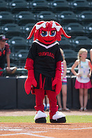 """Hickory Crawdads mascot """"Candy"""" prior to the game against the Savannah Sand Gnats at L.P. Frans Stadium on June 14, 2015 in Hickory, North Carolina.  The Crawdads defeated the Sand Gnats 8-1.  (Brian Westerholt/Four Seam Images)"""