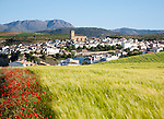 Alhama de Granada, Spain in Andalucian farming landscape of fields and rolling hills