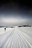USA, Wyoming, Yellowstone National Park, looking South down the snowpacked road between Mammoth Hot Springs and Norris