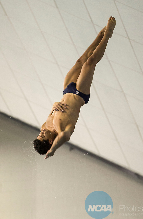 29 MAR 2014: The University of Arizona's Rafael Quintero competes in the platform diving during the Division I Men's Swimming & Diving Championship held at the Lee and Joe Jamail Texas Swimming Center on the University of Texas campus in Austin, TX.   Quintero's final score was 452.40 to finishing in second place.   Rudy Gonzalez/NCAA Photos