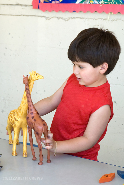 Berkeley CA  Four-year-old in fantasy play using animal models at preschool