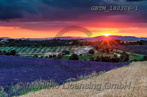 Tom Mackie, LANDSCAPES, LANDSCHAFTEN, PAISAJES, photos,+Europa, Europe, European, France, Plateau de Valensole, Provence, Tom Mackie, blue, dramatic outdoors, french, horizontal, ho+rizontals, lavender, mood, moody, red, scenic, sunrise, sunrises, sunset, sunsets, time ofday,Europa, Europe, European, Franc+e, Plateau de Valensole, Provence, Tom Mackie, blue, dramatic outdoors, french, horizontal, horizontals, lavender, mood, mood+y, red, scenic, sunrise, sunrises, sunset, sunsets, time ofday+,GBTM180306-1,#l#, EVERYDAY