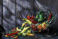 Gastronomie générale / Cuisine générale :  Les Piments