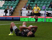 Northampton Saints's Tom Collins celebrates scoring his side's first try <br /> <br /> Photographer Stephen White/CameraSport<br /> <br /> European Rugby Challenge Cup - Northampton Saints v Clermont Auvergne - Saturday 13th October 2018 - Franklin's Gardens - Northampton<br /> <br /> World Copyright © 2018 CameraSport. All rights reserved. 43 Linden Ave. Countesthorpe. Leicester. England. LE8 5PG - Tel: +44 (0) 116 277 4147 - admin@camerasport.com - www.camerasport.com