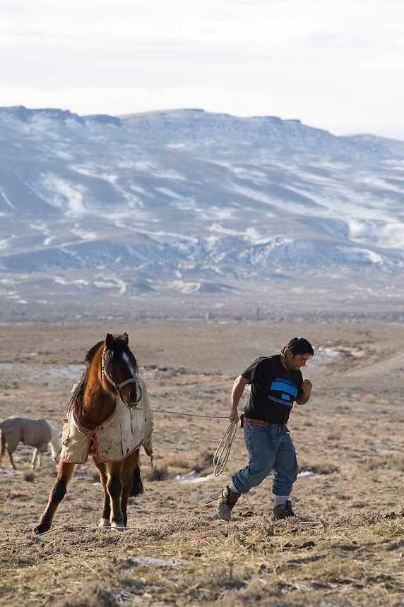 """Chilean sheep herder Lorenzo Cortez Vargas prepares for a day of work near his """"campito,"""" or small horse-drawn camp wagon, while watching a herd on Bureau of Land Management land outside Rock Springs, Wyo., Saturday, Feb. 7, 2009. Sheep herders working in southern Wyoming along the Colorado border complain of low pay, poor accomodations and lack of health care after they arrive on H2A visas to work for local ranchers. (Kevin Moloney for the New York Times)"""