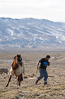 "Chilean sheep herder Lorenzo Cortez Vargas prepares for a day of work near his ""campito,"" or small horse-drawn camp wagon, while watching a herd on Bureau of Land Management land outside Rock Springs, Wyo., Saturday, Feb. 7, 2009. Sheep herders working in southern Wyoming along the Colorado border complain of low pay, poor accomodations and lack of health care after they arrive on H2A visas to work for local ranchers. (Kevin Moloney for the New York Times)"