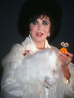Elizabeth Taylor 1993<br /> Photo By John BarrettPHOTOlink.net