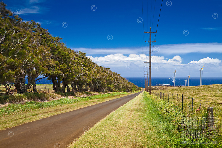 Upolu Airport Road and wind turbines of Upolu Point Wind Farm, Hawi, North Kohala, Big Island.