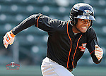 Outfielder Gregory Lorenzo (1) of the Delmarva Shorebirds bats in a game against the Greenville Drive on Monday, April 29, 2013, at Fluor Field at the West End in Greenville, South Carolina. Lorenzo is listed as the No. 29 prospect of the Baltimore Orioles, according to Baseball America. Delmarva won, 6-5. (Tom Priddy/Four Seam Images)