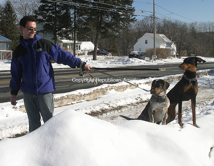 THOMASTON, CT. 23 JANUARY 05_NEW_020409DA06.jpg-Wednesday Michael Sudik of Thomaston trys to walk his dogs, Loyd and Hanna one way while they have a different way in mind.<br />  Darlene Douty