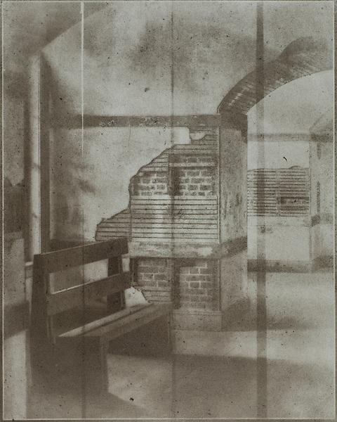 Bromoil Print