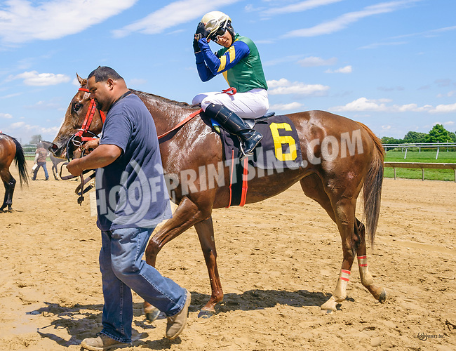 Jezzie winning at Delaware Park on 6/2417