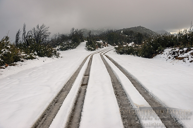 Tire tracks through fresh snow of road through theLos Padres National Forest, Monterey County, California