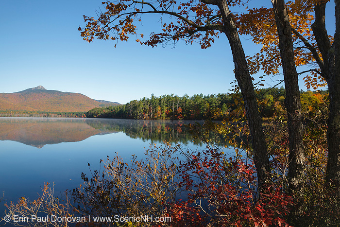 Reflection of Mount Chocorua in Chocorua Lake in Tamworth, New Hampshire during the autumn months. This lake offers a excellent view of Mount Chocorua.
