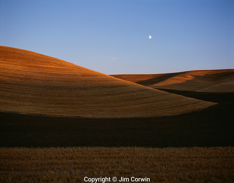 Rolling hills of croplands and harvested fields at sunset from Steptoe Butte Eastern Washington State USA