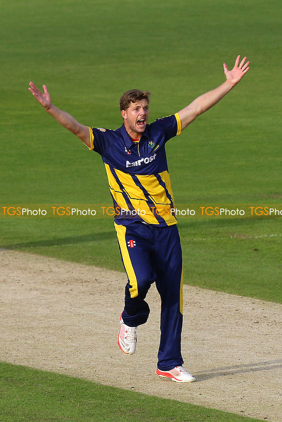 Craig Meschede of Glamorgan appeals in vain for the wicket of Ryan ten Doeschate
