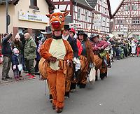Reit- und Ponyverein als Pferd - Büttelborn 11.02.2018: Rosensonntagsumzug der BCA