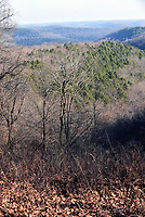 NWA Democrat-Gazette/FLIP PUTTHOFF<br />The winter landscape offers clear views of the Mark Twain National Forest      Dec. 22 2017    along Sugar Camp Scenic Drive.