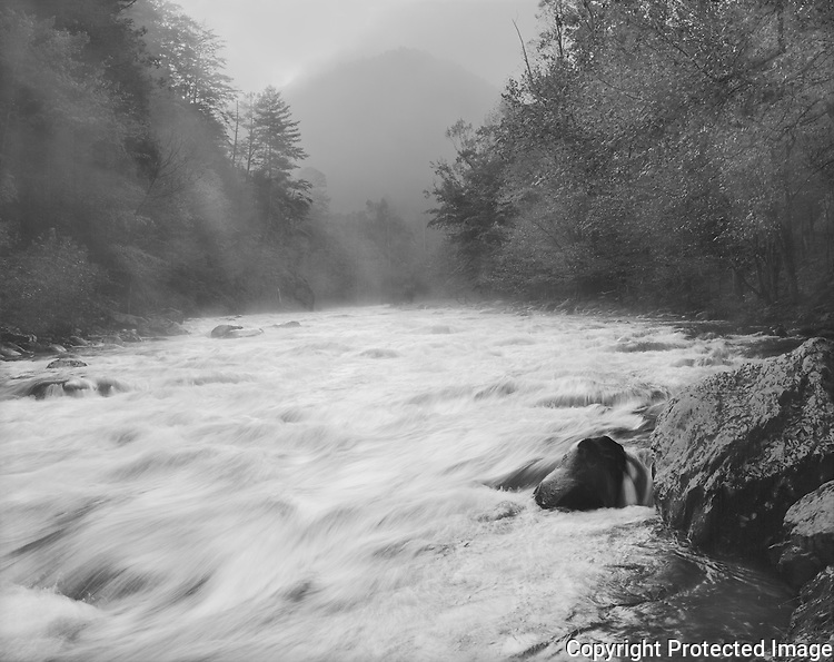 &quot;Little River At The Y&quot; Great Smoky Mountains National Park, Tennessee<br />