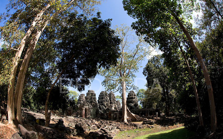Ruins and trees in the ancient Khmer city of Angkor, a UNESCO World Heritage Site, in northwestern Cambodia near Siem Reap.