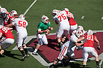 2010 Wisconsin Badgers Spring Game