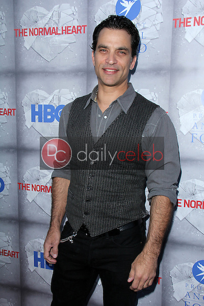 Johnathon Schaech<br /> at the HBO Premiere of &quot;The Normal Heart,&quot; WGA Theater, Beverly Hills, CA 05-19-14<br /> David Edwards/DailyCeleb.com 818-249-4998