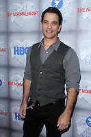 """Johnathon Schaech<br /> at the HBO Premiere of """"The Normal Heart,"""" WGA Theater, Beverly Hills, CA 05-19-14<br /> David Edwards/DailyCeleb.com 818-249-4998"""