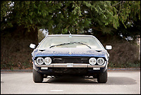 BNPS.co.uk (01202 558833)<br /> Pic: Bonhams/BNPS<br /> <br /> 1971 Lamborghini Espada Series 2 estimated at &pound;93,000.<br /> <br /> If barn finds are the holy grail for car collectors then this selection of 12 vintage motors worth &pound;2million found languishing in a Swiss schloss is something else. <br /> <br /> The stunning collection, which boasts an iconic 1921 Rolls-Royce Silver Ghost, was started by a wealthy car enthusiast in the 1950s but since his death has remained largely untouched. <br /> <br /> However, the original owner's son recently rediscovered his father's haul and will now offer it at auction.