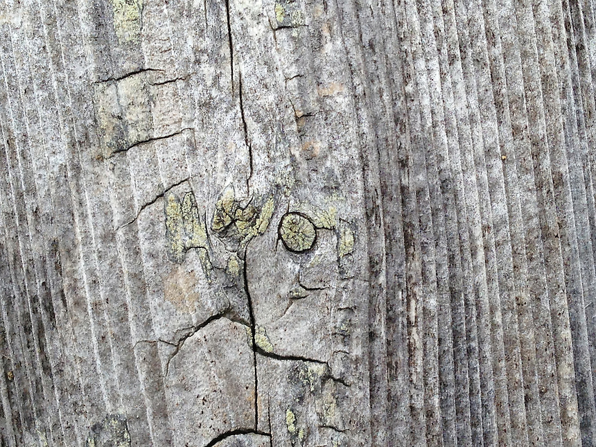Wood Detail, Castine, Maine, US