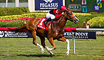 HALLANDALE BEACH, FL - JANUARY 27: Girls Know Best #1, with Javier Castellano, wins the Ladies' Turf Sprint Stakes on Pegasus World Cup Invitational Day at Gulfstream Park Race Track on January 27, 2018 in Hallandale Beach, Florida. (Photo by Liz Lamont/Eclipse Sportswire/Getty Images)
