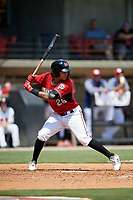 Carolina Mudcats Eddie Silva (28) at bat during a Carolina League game against the Winston-Salem Dash on August 14, 2019 at Five County Stadium in Zebulon, North Carolina.  Winston-Salem defeated Carolina 4-2.  (Mike Janes/Four Seam Images)