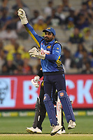 1st November 2019; Melbourne Cricket Ground, Melbourne, Victoria, Australia; International T20 Cricket, Australia versus Sri Lanka; Kusal Perera of Sri Lanka receives the ball from a fielder - Editorial Use