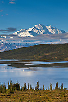 Late Morning Sunshine On Wonder Lake Reflecting The North Face Summit Of Mt. Denali, North America's Largest Mountain, Denali National Park, Interior, Alaska.