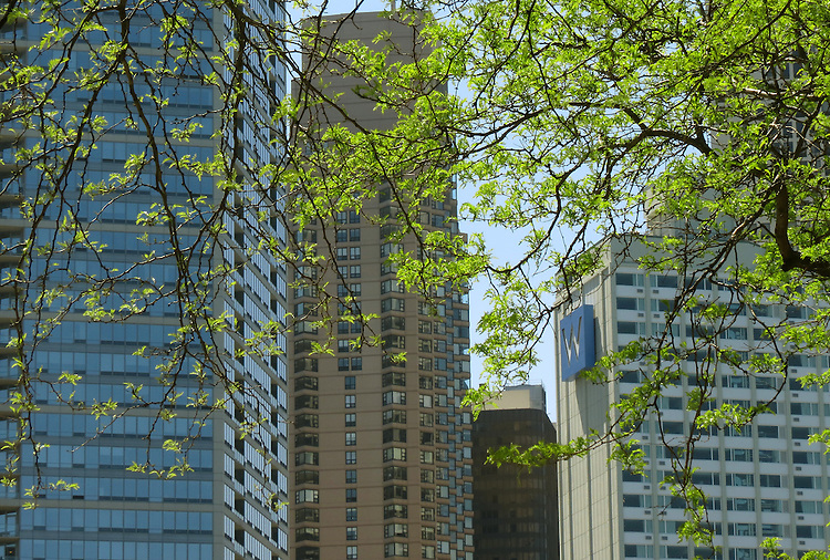 Chicago Scenes - Spring -  Skyline seen from Milton Lee Olive Park, on the banks of Lake Michigan. (DePaul University/Jamie Moncrief)