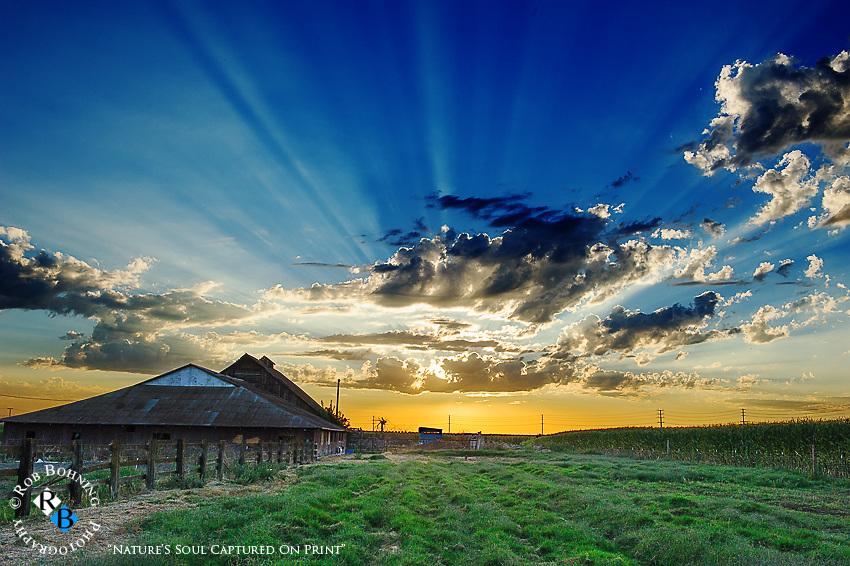 A sunset over the Dutch Hollow Farm in Modesto, California