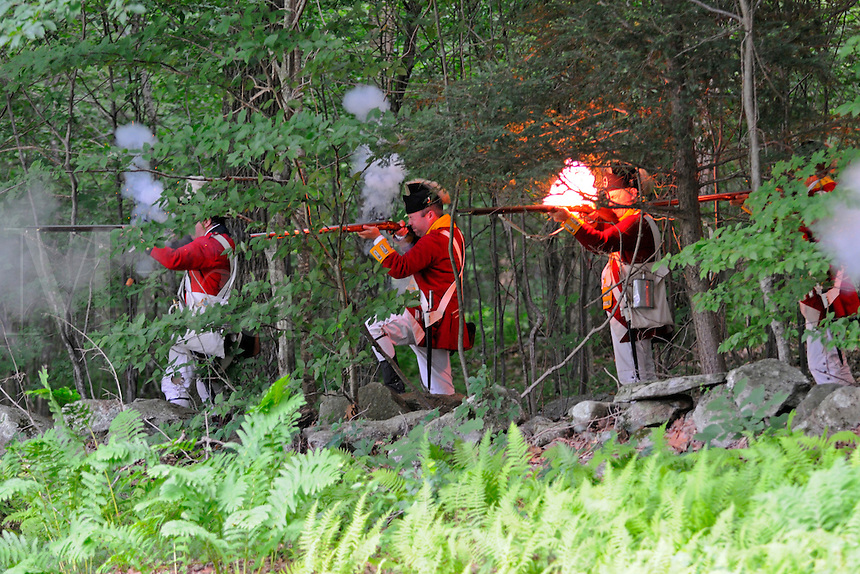British redcoat soldiers of the Ninth Regiment of Foot fire from cover during a Revolutionary War reenactment at the Nathan Hale Homestead, Coventry, Connecticut, USA...
