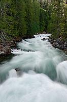 Snowmelt water rushes down Stehekin River. Vertical view by Highbridge, Stehekin, North Cascades National Park, Washington State.