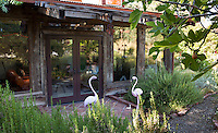 California home with glass windows overlooking garden of sunny summer-dry, Mediterranean landscaping beyond small patio guarded with flamingos - Barbata garden, Walnut Creek, California