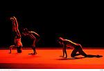 DFSConception, Cecilia Bengolea, François ChaignaudCollaboration chorégraphique, Damion BG Dancer, Joan MendyInterprétation, Cecilia Bengolea, Damion BG Dancer, François Chaignaud, Valeria Lanzara, Joan Mendy, Erika Miyauchi, Shihya PengChefs de chant, Cécile Banquey, Baptiste Chopin, Alix Debaecker, Eugénie de Mey, Marie Picaut, Celia StroomRégie générale et lumières, Jean-Marc SégalenVidéo, Guilhem Comaills (avec la participation de Giddy Elite Team)Son, Clément BernerdCostumes – Conception, Cecilia Bengolea, François Chaignaud – Réalisation : Méryl Coster, France LorenziLieu : Centre PompidouVille : Paris