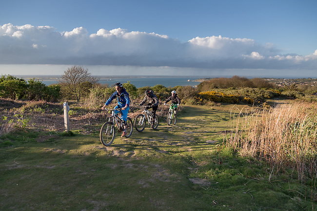 Mountain bikes on Headon Warren, West Wight