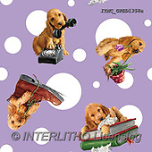 Marcello, GIFT WRAPS, GESCHENKPAPIER, PAPEL DE REGALO, paintings+++++,ITMCGPED1358A,#GP#, EVERYDAY
