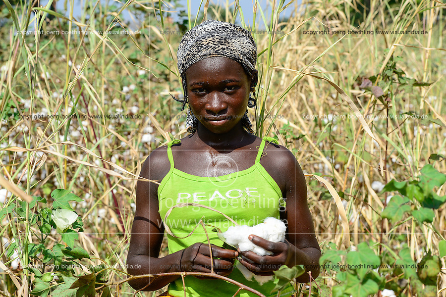 BURKINA FASO , Obiré, Gan kingdom, women harvest cotton by hand at farm of 29th. Gan king SA MAJESTÉ ROI GAN, young woman wearing a T-shirt with the printed word PEACE / Frauen ernten Baumwolle per Hand auf der Farm des Gan Koenig SA MAJESTÉ ROI GAN