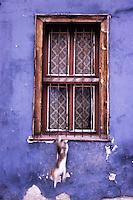 Plovdiv, Bulgaria, 2005