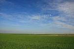 Israel, Shephelah region. Fields by route 353 .